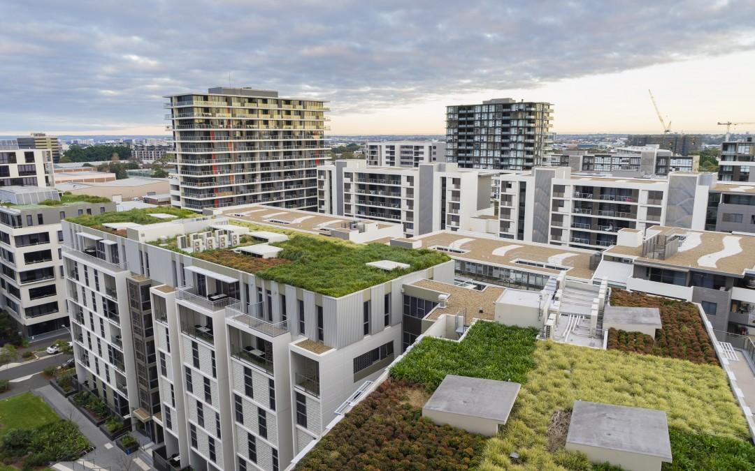 Stavíte? Buďte trendy a zvolte zelenou střechu!