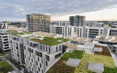 Nový článek: Stavíte? Buďte trendy a zvolte zelenou střechu!
